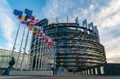 Plenary Strasbourg 2020_