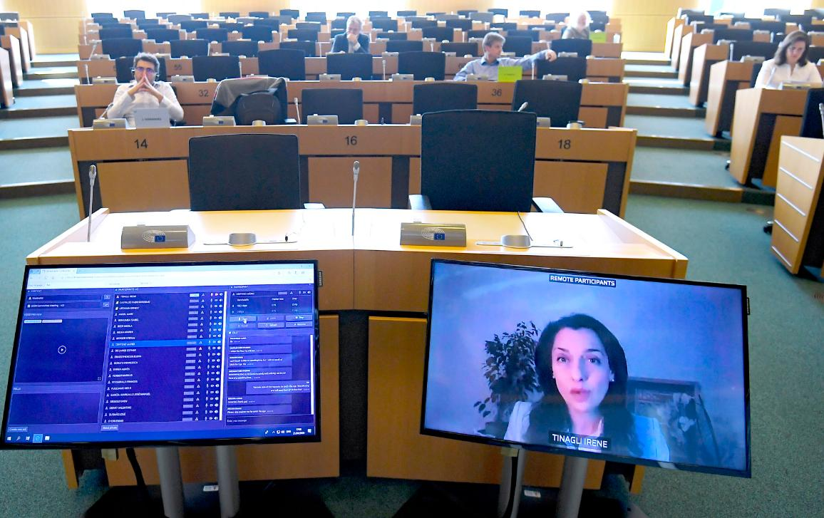 One fo the committee meeting held in the European Parliament via video conference.