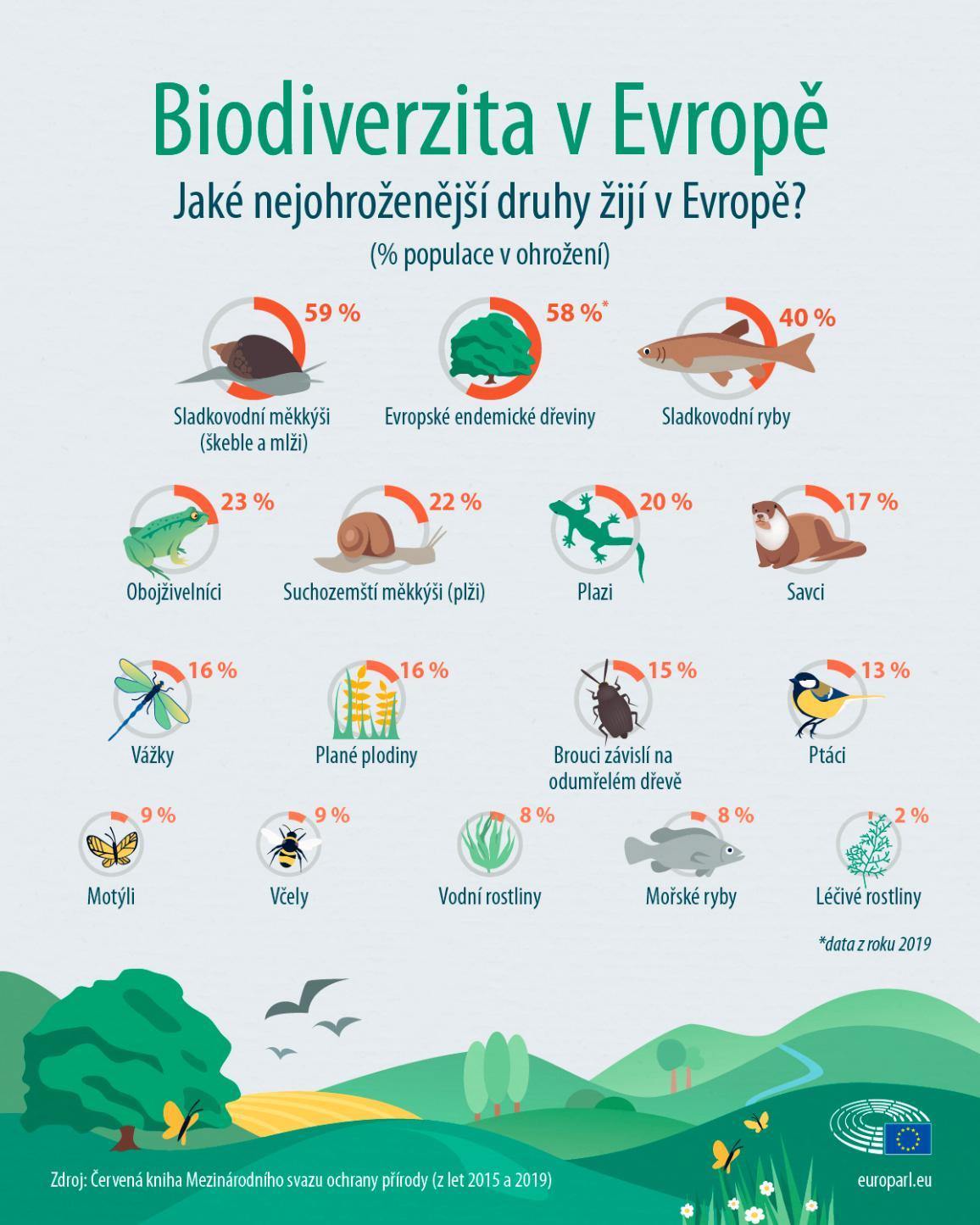 Infografika nejohroženějších rostlinných a živočišných druhů žijících v Evropě