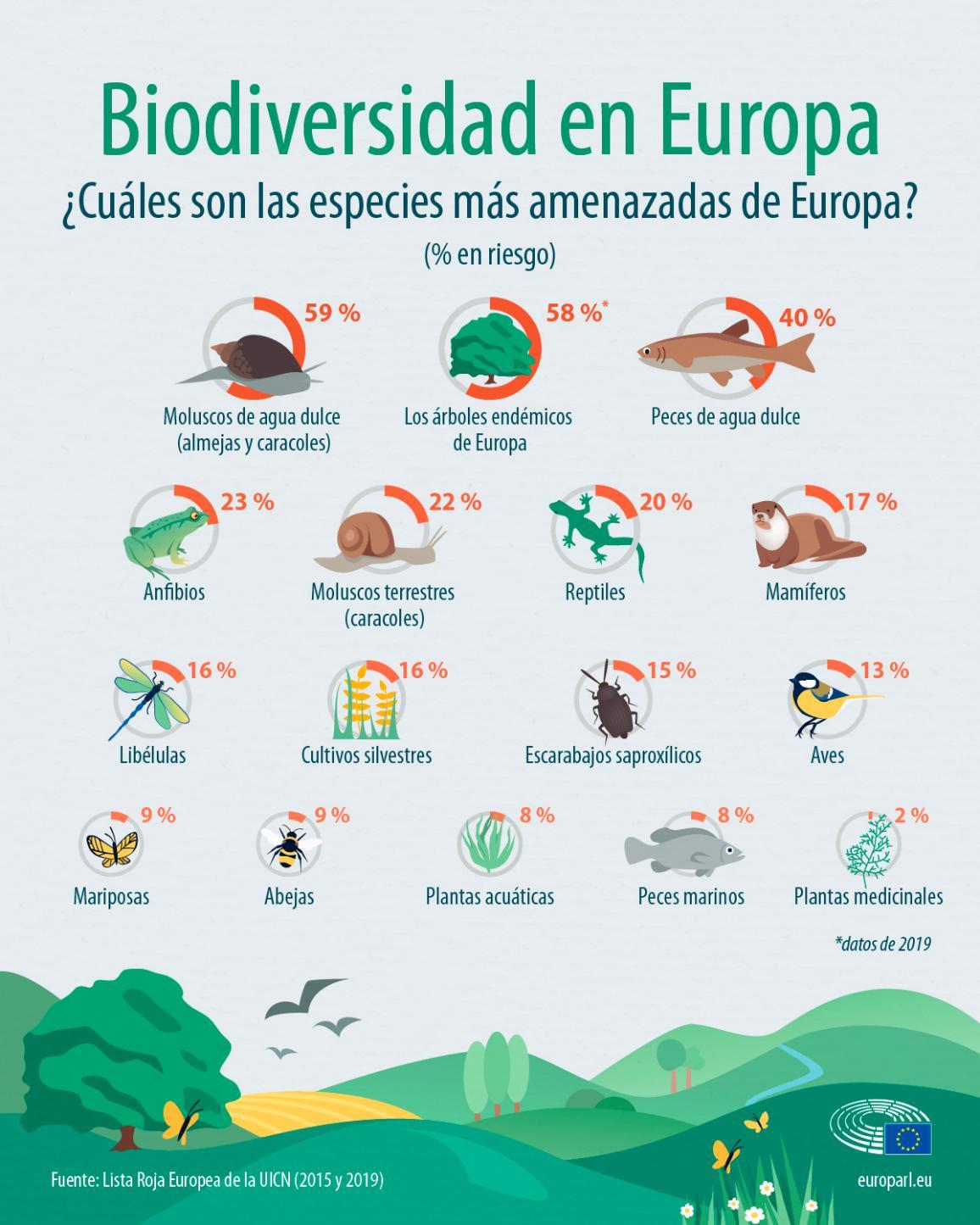 Infografía sobre la biodiversidad en Europa