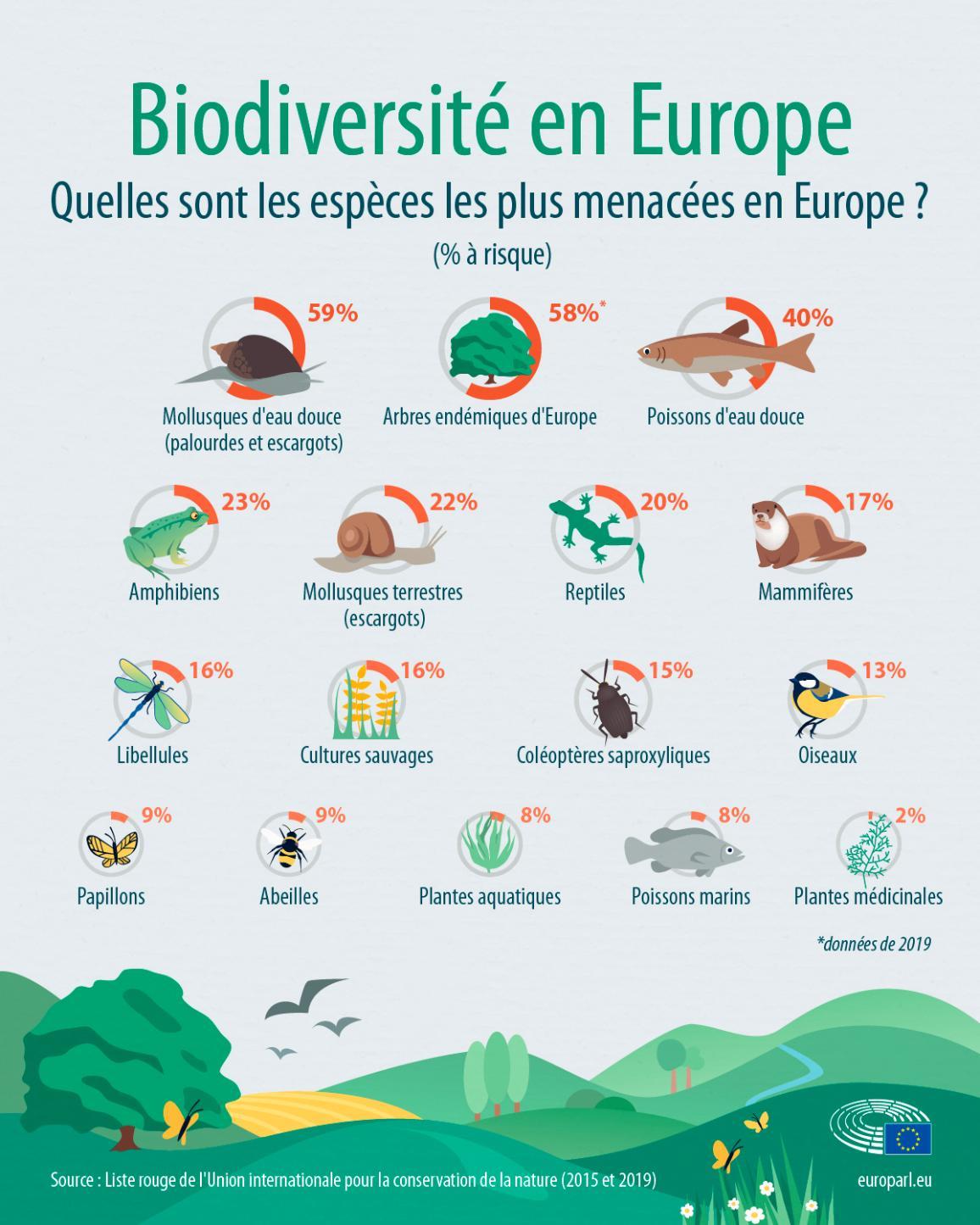 Espèces menacées en Europe – faits et chiffres (infographie)