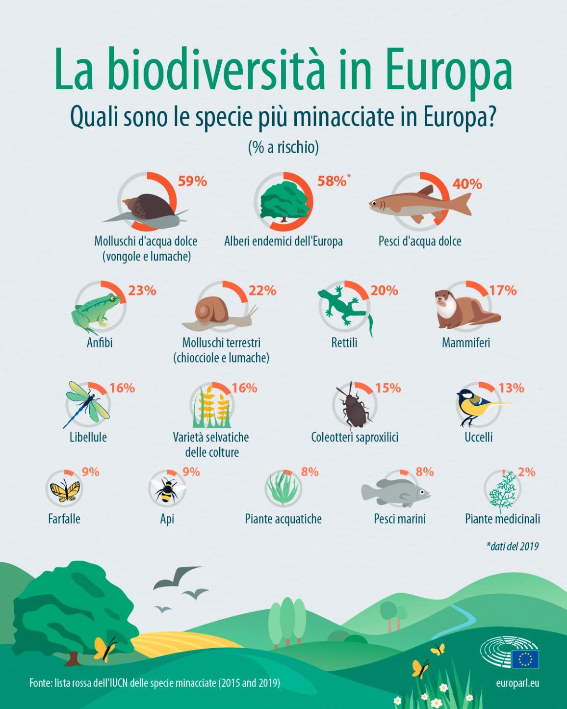 L'infografica mostra la percentuale di rischio delle specie europee. Le specie più minacciate in Europa sono i molluschi d'acqua dolce, gli alberi endemici e i pesci d'acqua dolce.