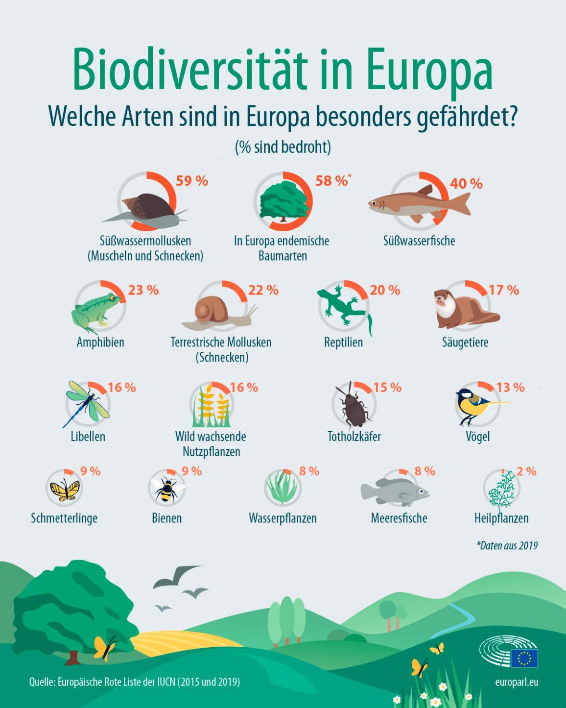 Die Infografik zeigt die gefährdetsten Arten in Europa