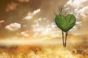 Dry countryside with one green tree in the shape of a heart