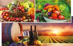 Three pictures with a basket of fruits, a plate with vegetables and bottles and glasses of wines in front of a vineyard