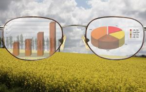 A pair of glasses showing graphics with a field behind