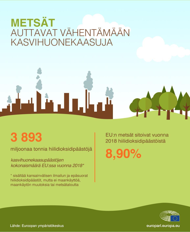 Infografiikka EU:n hiilidioksidipäästöistä ja metsien sitomasta osuudesta