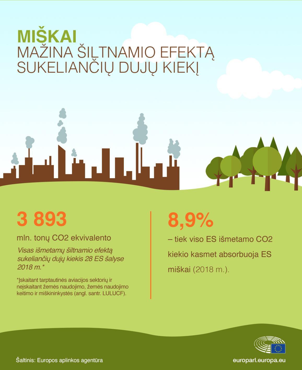 Infografikas: miškai mažina šiltnamio efektą sukeliančių dujų kiekį