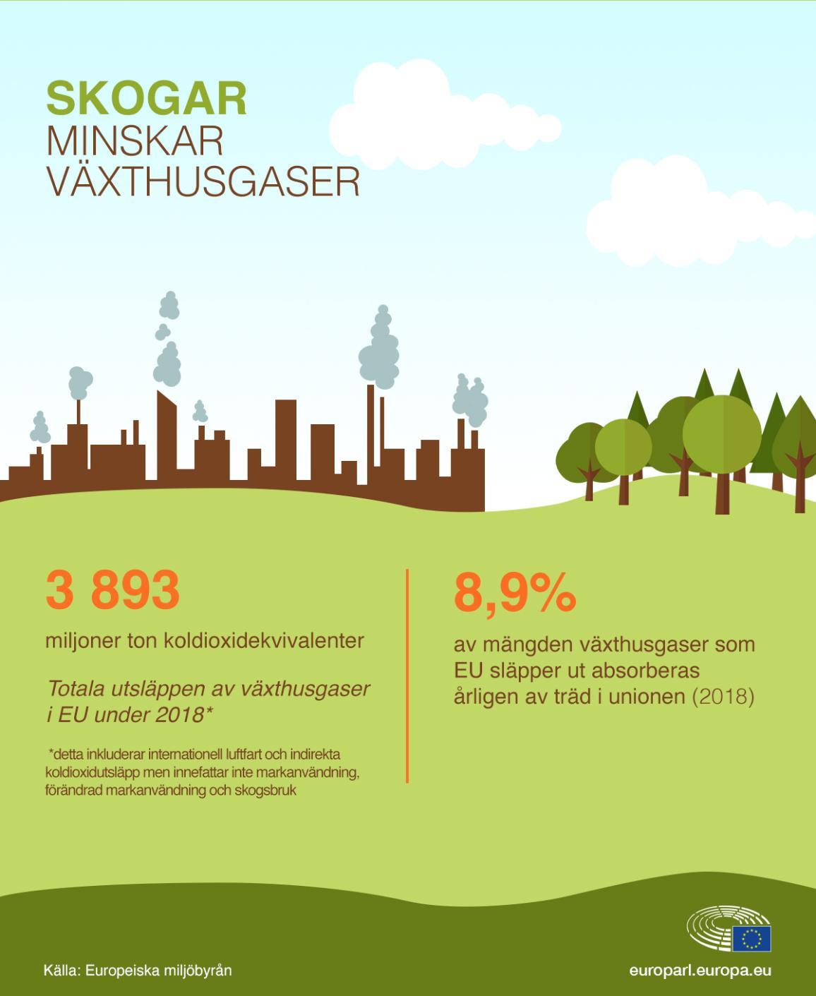Nyhetsgrafik om hur skogar kompenserar koldioxidutsläpp