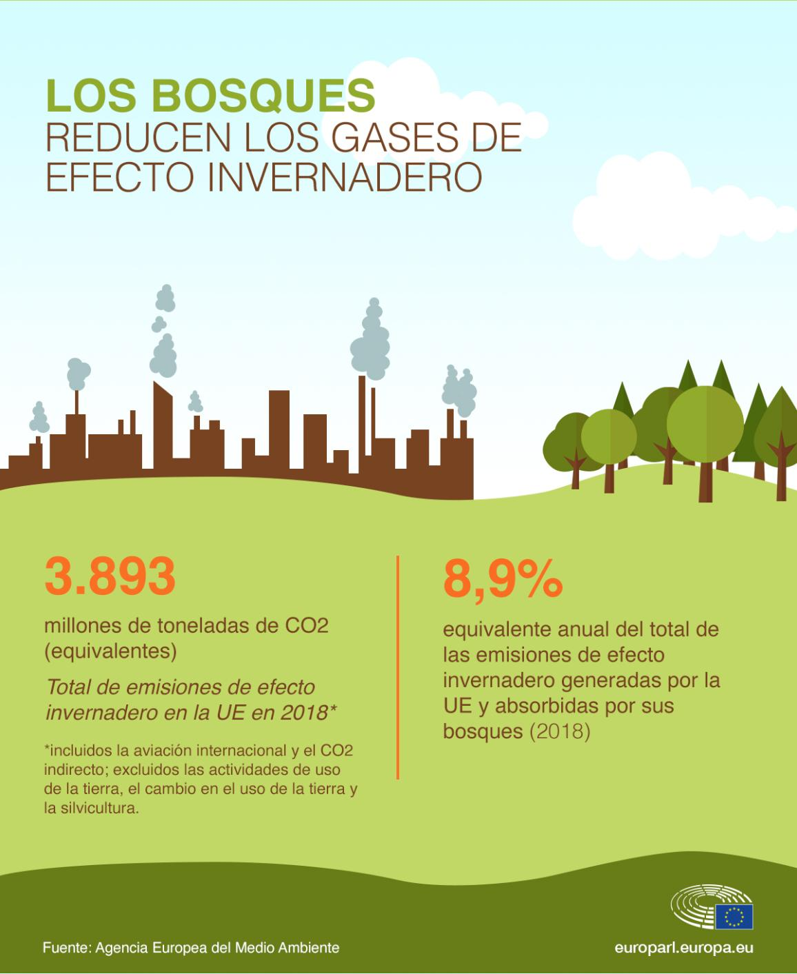infografic illustration on forests - help to reduce greenhouse gases