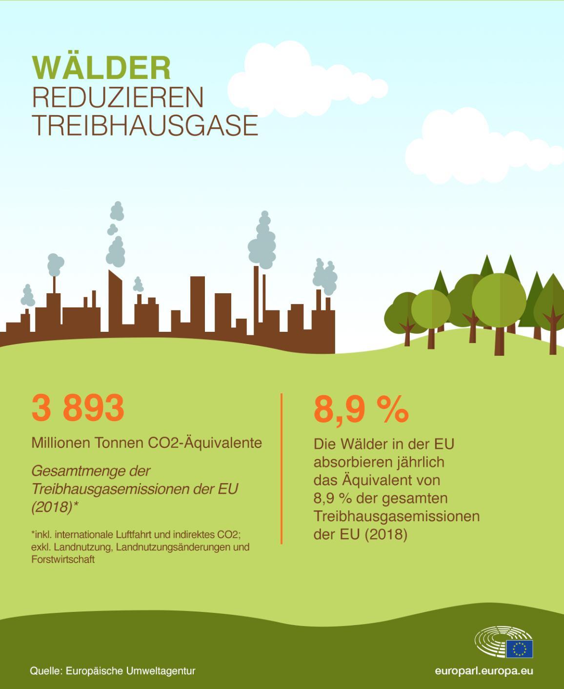 Die Infografik zeigt wie Wälder zur Verringerung der Treibhausgase beitragen