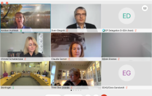 Screen view of the remote meeting between members of the European and the Norwegian parliaments