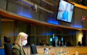 FEMM Hearing on Women's Rights Defenders