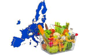 EU map with a purchasing basket full of food