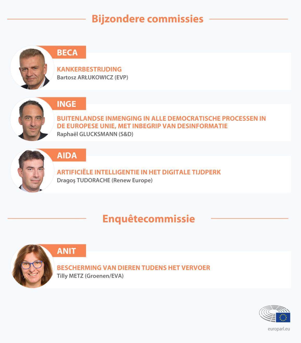 Overzicht van de voorzitters van de bijzondere commissies en de onderzoekscommissie