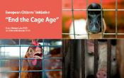farm animals in cages: duck, hen and pig