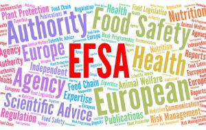 EFSA cloud