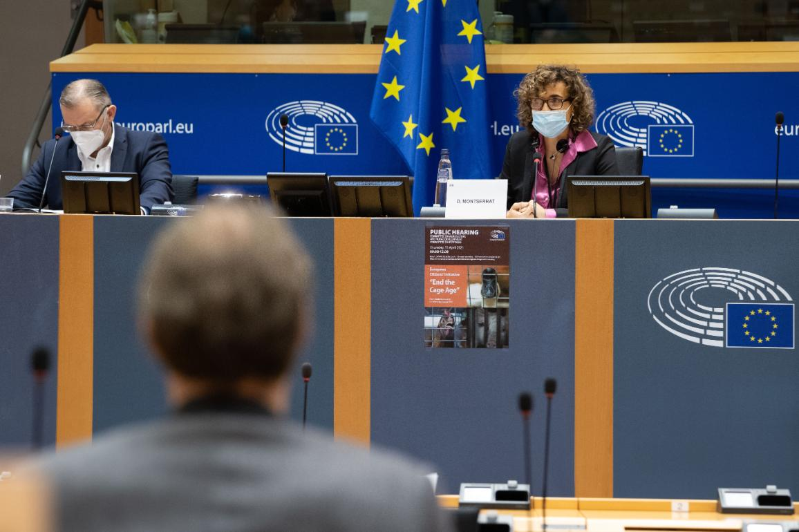 Agriculture and Petitions MEPs debated a citizens' initiative for cage-free farming © EU 2021 - EP