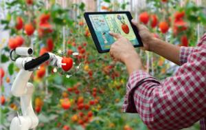 AI, Agriculture and Food Security