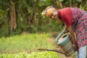 Happy African farmer