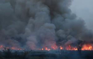 burning woodland