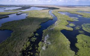 Danube Delta aerial view