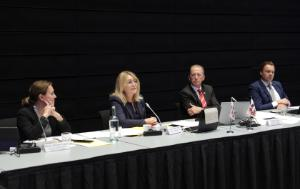 Ms Christel SCHALDEMOSE, MEP, and Mr Günter VOGT, President of the EEA JPC, Co-Chairing the 56th EEA JPC