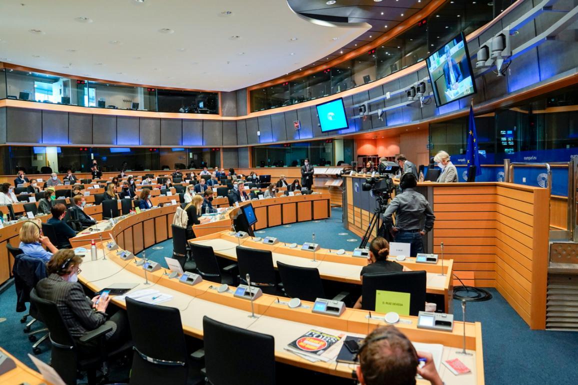 Civil Liberties committee meeting in 2020 ©