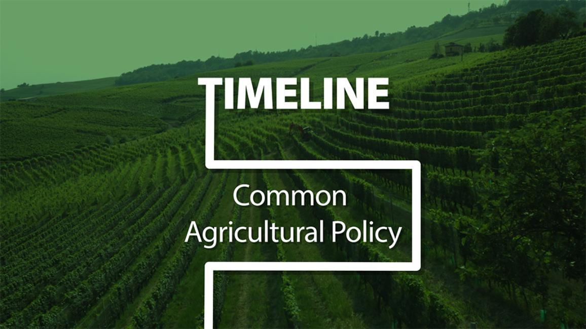 The Common Agricultural Policy has long been one of the EU's flagship policies. Let's take a look back at how it has shaped European farming and how the CAP is becoming greener and fairer, keeping the rights of farmers at its core.