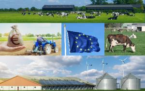 Several pictures: cows in a field in front of farm sheds, a hessian bag with euro logo on it next to a tractor, EU flag, cows in a field, a huge hangar for intensive farming with tanks and wind turbines in the background.