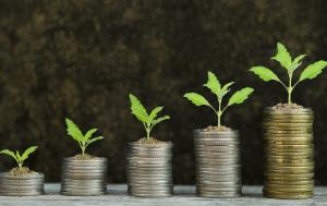Stacks of coins with small plants growing from them.