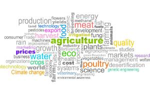 Mixture of words in relation with agriculture such as water, meat, prices, science, eco, etc...