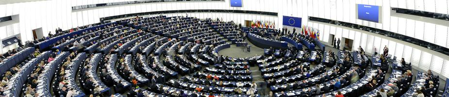 What do MEPs do? | Elections & MEPs | European Parliament
