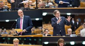 collage of MEPs.