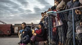 migrants stand in a fence.