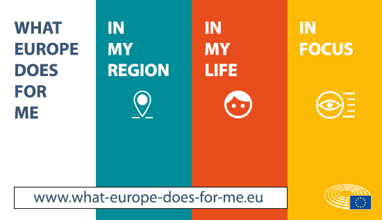 MEPs & Elections | European Parliament Liaison Office in the